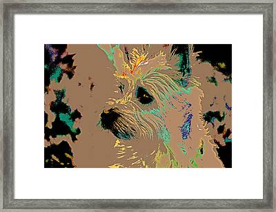 The Terrier Framed Print by Lynn Sprowl