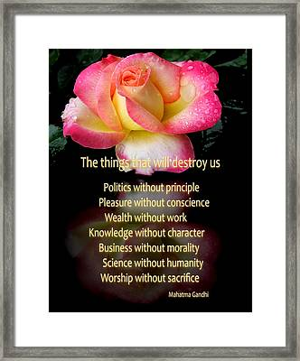 Framed Print featuring the photograph The Things That Will Destroy Us by George Bostian