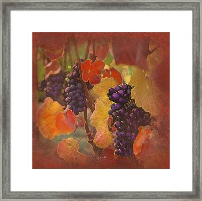 The Thought Of Drink Framed Print