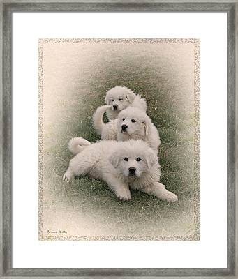 The Three Framed Print