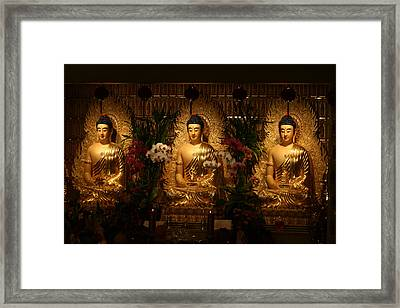The Three Buddhas Framed Print