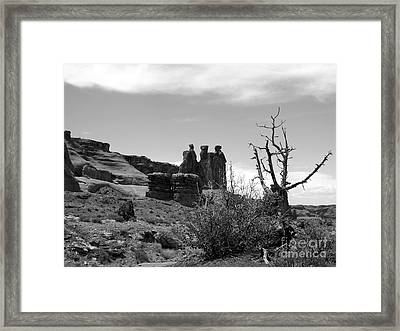 The Three Gossips Framed Print by Mel Steinhauer