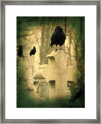 The Three Graveyard Crows Framed Print