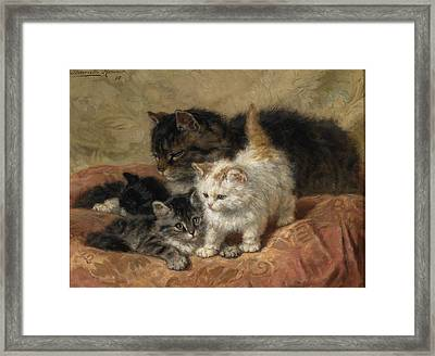 The Three Little Kittens Framed Print by MotionAge Designs