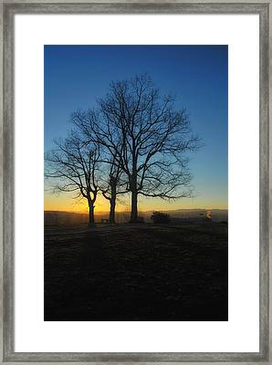 The Three Oaks Framed Print by Photography  By Sai