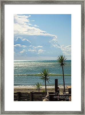 The Three Palms Framed Print