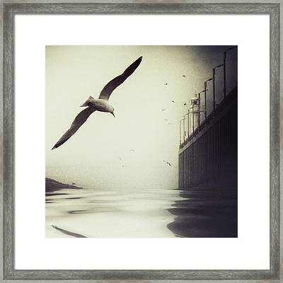 The Tide Framed Print