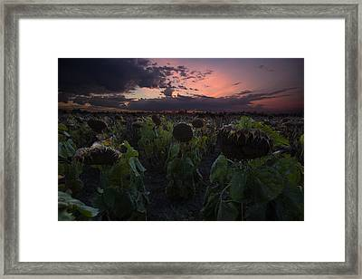 The Time Has Come Framed Print