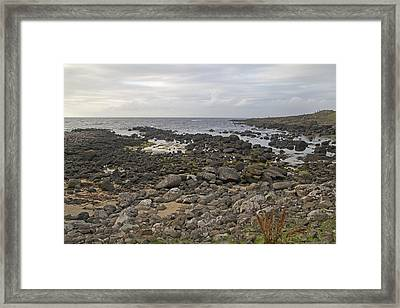 The Timing Of Stone -- Giant's Causeway -- Ireland Framed Print