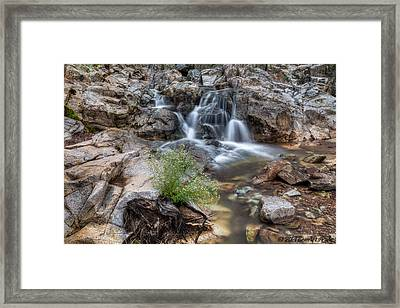 The Top Of Carr Canyon Falls Framed Print by Beverly Parks