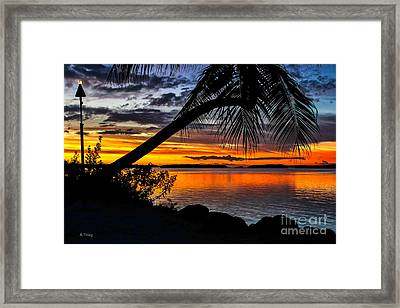 The Torch The Island Sunset And The Lone Palm Framed Print by Rene Triay Photography