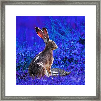 The Tortoise And The Hare . Blue Square Framed Print by Wingsdomain Art and Photography