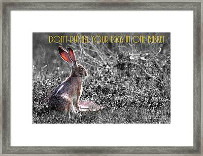 The Tortoise And The Hare Dont Put All Your Eggs In One Basket 40d12379 Bw Framed Print by Wingsdomain Art and Photography