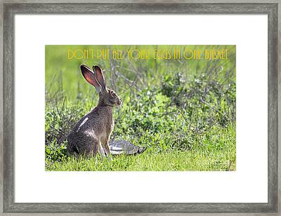 The Tortoise And The Hare Dont Put All Your Eggs In One Basket 40d12379 Framed Print by Wingsdomain Art and Photography