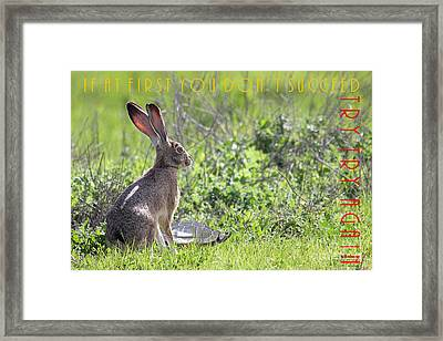 The Tortoise And The Hare Try Try Again 40d12379 Framed Print by Wingsdomain Art and Photography