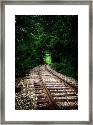 The Tracks Through The Woods Framed Print