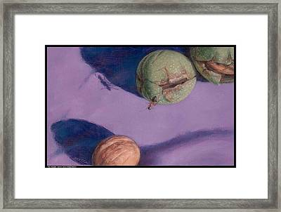 The Traveler Framed Print by Diana Moses Botkin