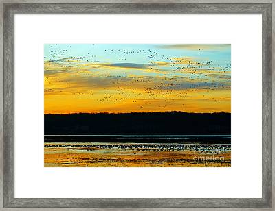 The Travelers  Framed Print