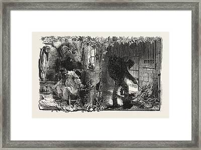 The Treaty With France French Rags And French Paper Framed Print by French School