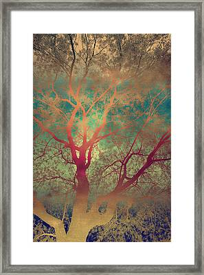 The Tree Called Beautiful Framed Print by Gray  Artus