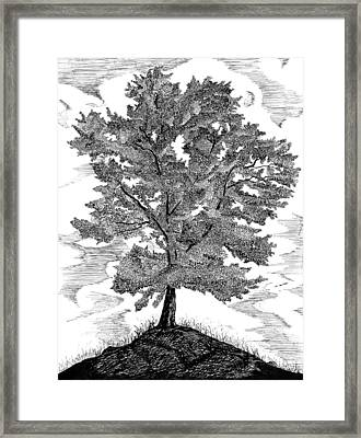 The Tree Framed Print by Carl Genovese