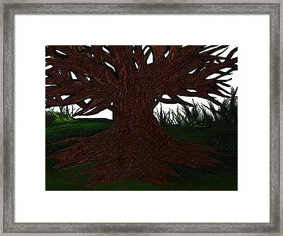 The Tree Framed Print by Frances Lewis