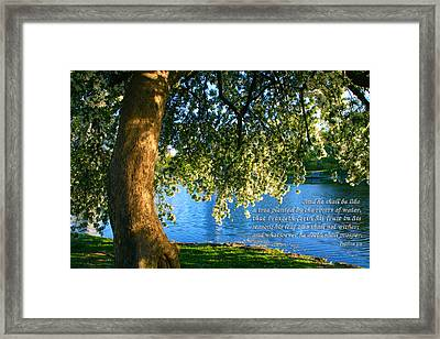 The Tree God Spoke Of... Framed Print by Terry Wallace