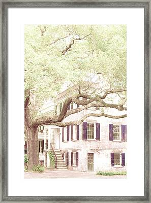 The Tree In The Front Framed Print by Margie Hurwich