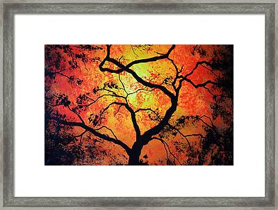 The Tree Of Life #1 Framed Print
