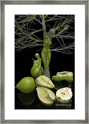 The Tree Of Life -  II Framed Print by Mihai Manea