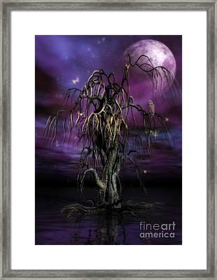 The Tree Of Sawols Framed Print by John Edwards