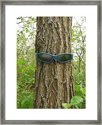 The Trees Are Watching 1 Framed Print by Paddy Shaffer