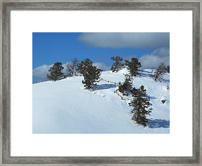Framed Print featuring the photograph The Trees Take A Snow Day by Michele Myers