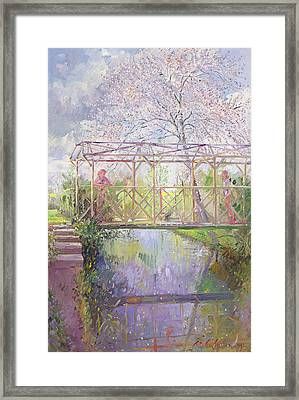 The Trellis Crossing Framed Print by Timothy Easton