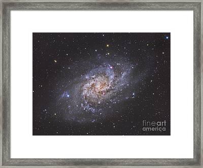 The Triangulum Galaxy Framed Print by Reinhold Wittich