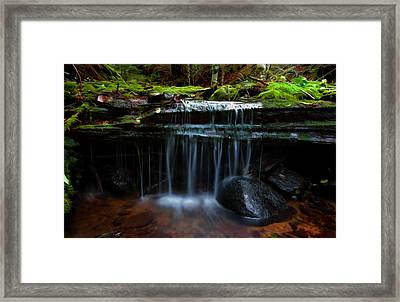 The Trickling Brook Framed Print by Timothy Hack