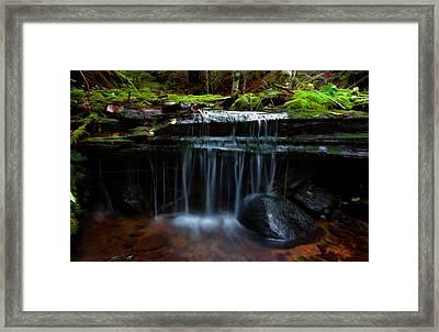 The Trickling Brook Framed Print