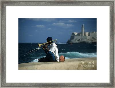 The Trombonist Framed Print by James Brunker