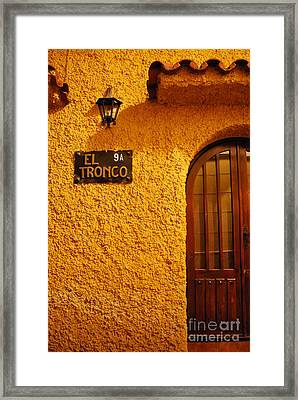 The Trunk Framed Print by Susan Hernandez