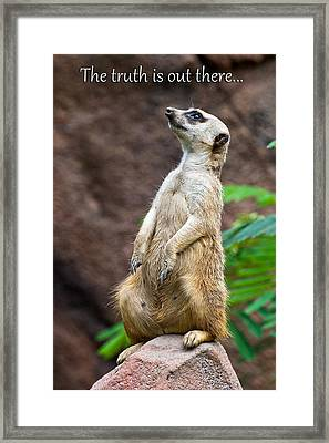 The Truth Is Out There Framed Print by Jeff Abrahamson