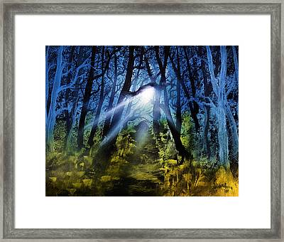 The Truth Framed Print by Jamil Alkhoury