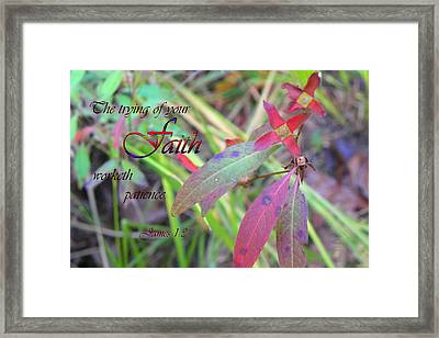 The Trying Of Faith Framed Print