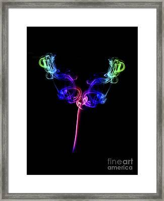 The Tulip Framed Print by Steve Purnell