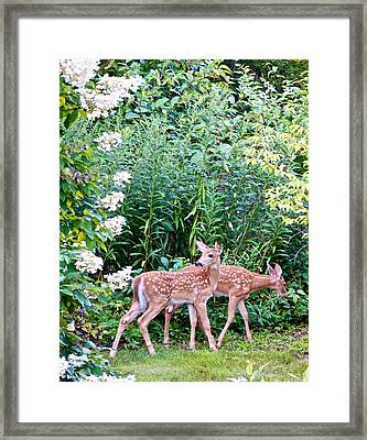 The Twins On The Move Framed Print
