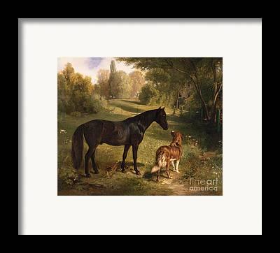 Dark Horse Framed Prints