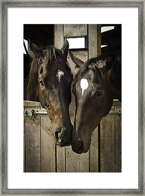 The Two Of Us Framed Print by Lesley Rigg