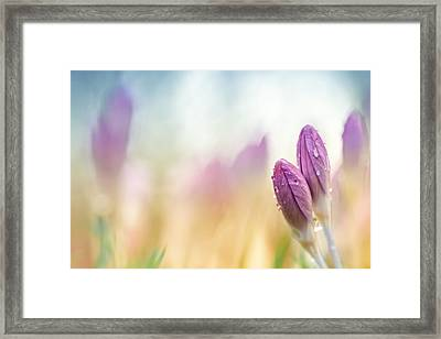 The Two Of Us Together.... Framed Print by Bob Daalder