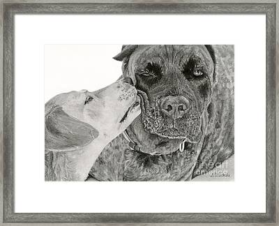The Unconditional Love Of Dogs Framed Print by Sarah Batalka
