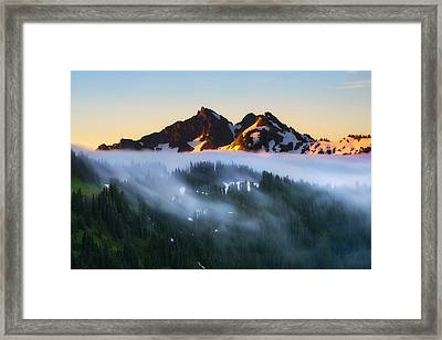 The Unicorn In Paradise Framed Print