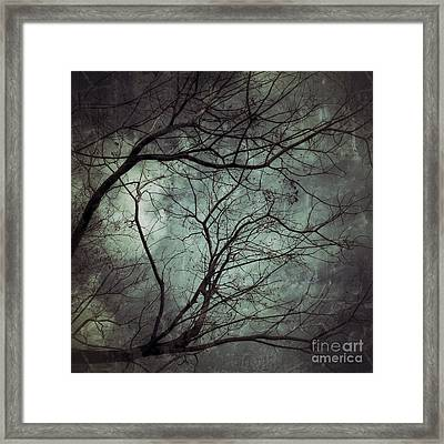 The Unknown Framed Print